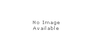 READY MADE TROPHIES
